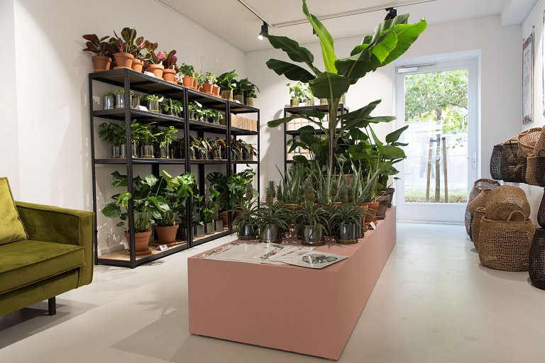 Pop-up store met trendy planten